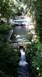 Hidden Springs3