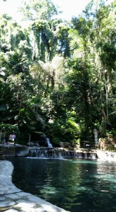 Hidden Springs6