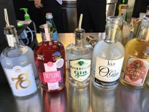 gin (1)